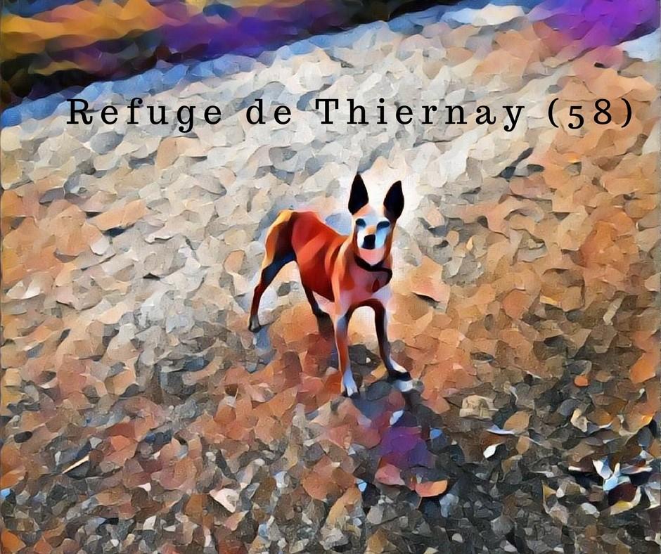 Le top des testeuses Refuge de Thiernay, suivez-moi !!! Mon Univers